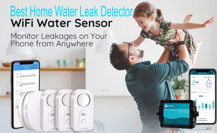 best home water leak detector