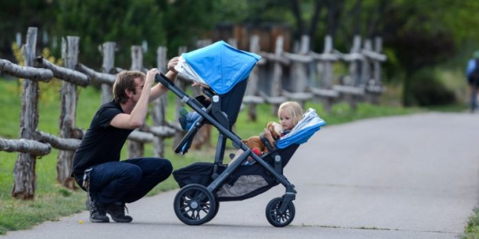 Double Stroller Buying Guide
