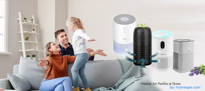 how to use air purifier at home