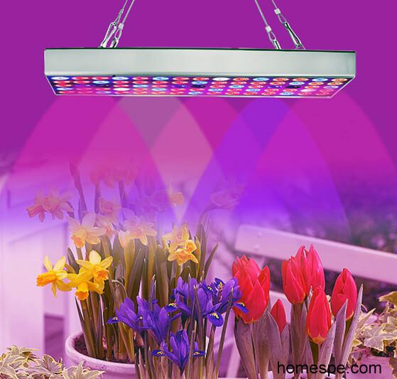 LED vs. HPS Grow Lights