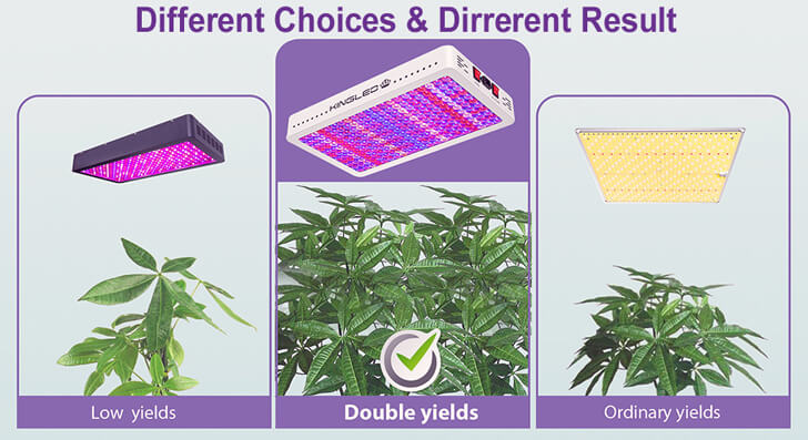 The difference between LED and HPS Grow light