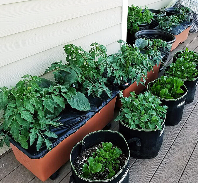 How to Make An Ideal Organic Potting Soil Or Best Soil For Herbs In Pots